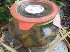 Bocal de 24 escargots fermiers